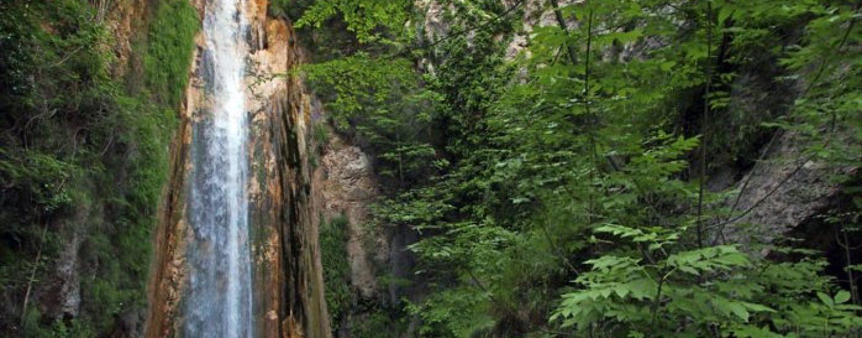 Tutela dell'ecosistema, Oasi di Senerchia ed Accademia Kronos firmano convenzione