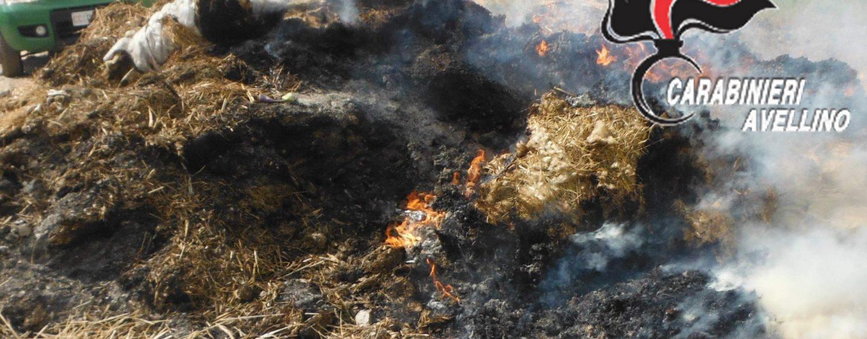 Appicca un rogo in un fondo agricolo: deferito 60enne
