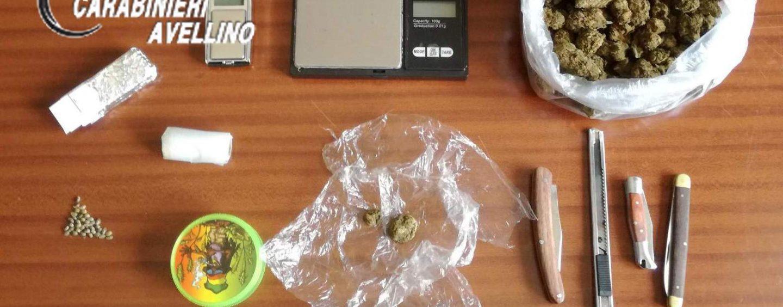 """Il cane """"Gero"""" scova la droga nascosto in un mobile: arrestato 16enne"""