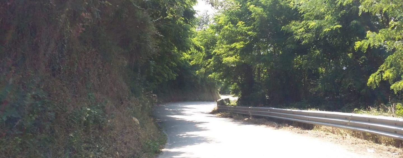 Strade provinciali, il comune di Montefusco provvede alla pulizia