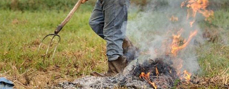 Dà fuoco a rifiuti pericolosi per smaltirli: denunciato un 70enne