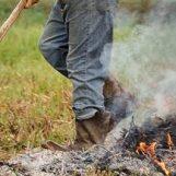 Sorpreso a bruciare sterpaglie e rifiuti, terreno sotto sequestro dalla Forestale di Benevento