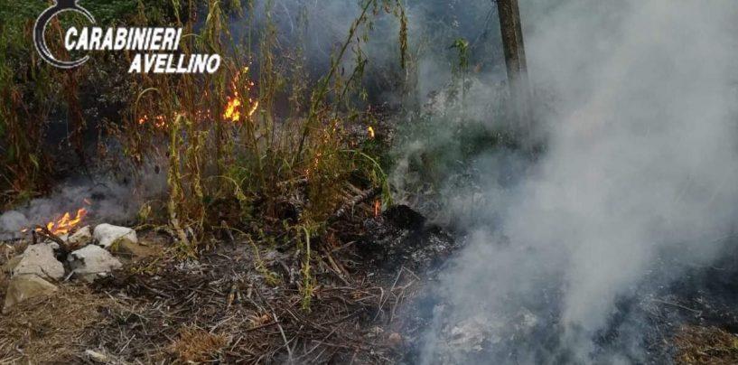 Bruciano fogliame e rametti: tre agricoltori colti sul fatto dai Carabinieri