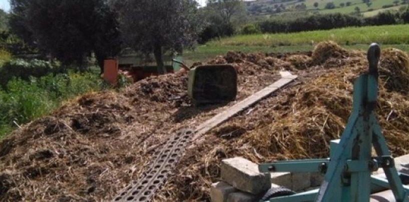 Dal lavoro nero alla gestione illecita dei rifiuti. Azienda agricola nel mirino dell'Arma