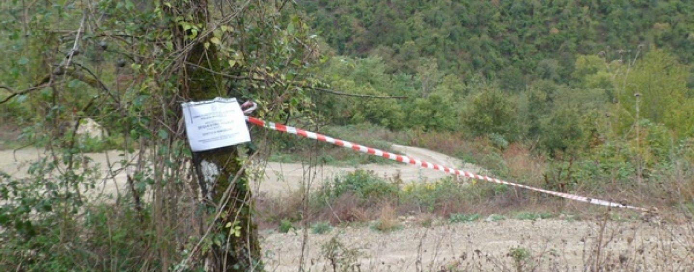 Realizzano una strada in area boschiva sottoposta a vincoli: tre denunce