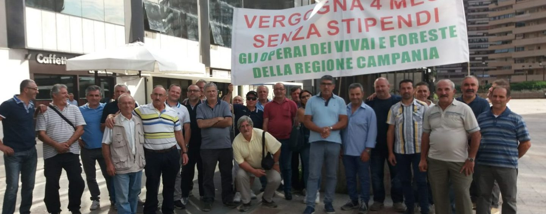 """Forestali senza stipendio fa cinque mesi, Cgil all'attacco: """"Soldi bloccati dalla malaburocrazia"""""""