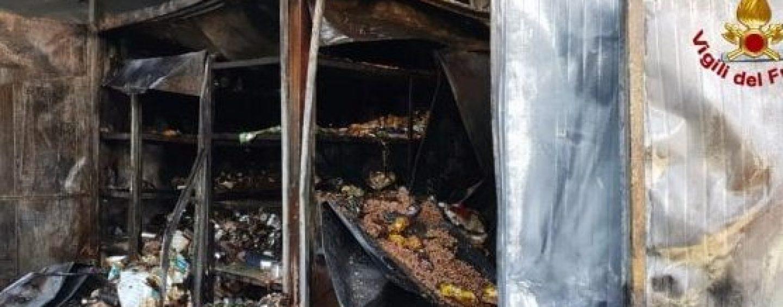 In fiamme un gattile nel Milanese: morti oltre cento mici