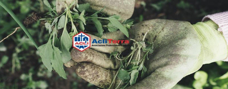 AcliTerra: alla Fiera del Gusto arriva il primo Festival dell'agricoltura e consumo consapevole