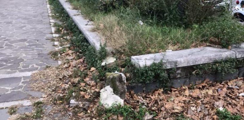 """Viale Italia, l'appello di Maglione per superare il degrado: """"Adottiamo noi le aiuole"""""""