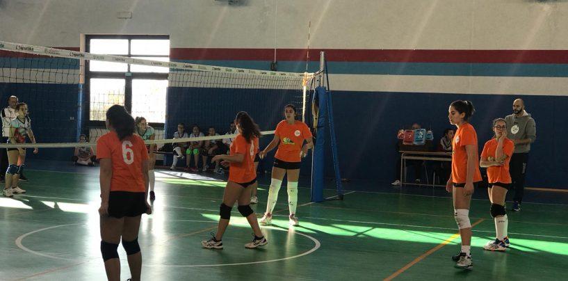 L'Academy School Volley sa solo vincere: ok Prima Divisione e Under 14