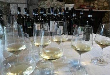 """I sindaci di """"Sannio Falanghina"""" alla Camera: la sfida del vino in 120 mosse"""