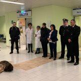 """Visita dei Carabinieri al reparto Pediatria del """"Landolfi"""": il cane Pirat conquista i bambini"""