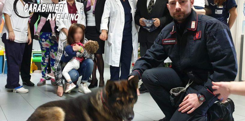 Carabinieri in visita al reparto Pediatria del Frangipane con i cani Pirat e Carly