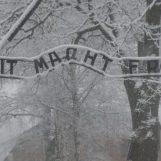 """Giornata della Memoria, gli alunni del """"Guido Dorso"""" ad Auschwitz e Birkenau"""