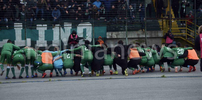 Avellino-Monterosi, la fotogallery del successo biancoverde