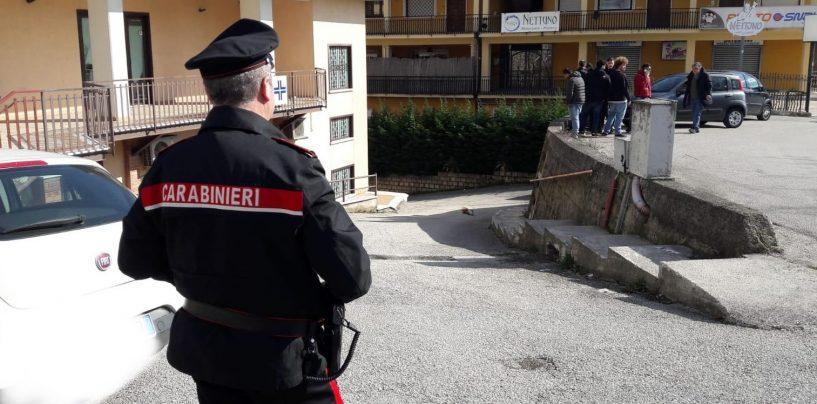 Cane impiccato, i Carabinieri scovano il bruto: denunciato 65enne di Montemiletto