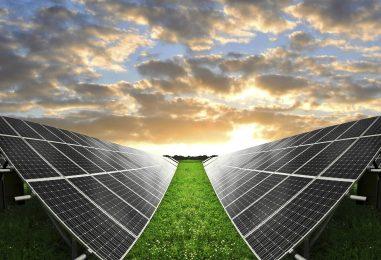 I giovani imprenditori investono nella green economy ma non assumono