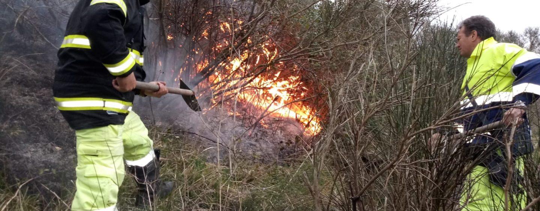 FOTO / A fuoco un campo di ginestre a Luogosano. All'opera 12 uomini del Genio Civile