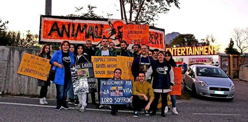Animalisti in campo ad Avellino per la protesta davanti al circo