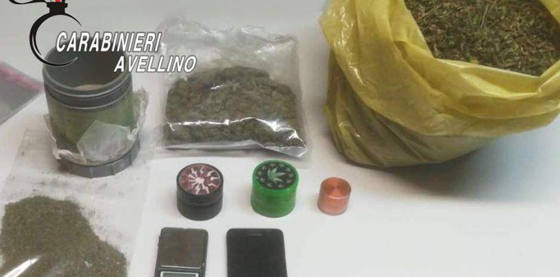 Coltiva marijuana in casa per spacciarla: arrestato 53enne di Mirabella