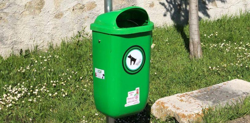Grottaminarda, il Rotaract Avellino Est dona due Dog point