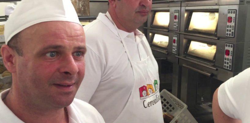 Il pane irpino di Nicola Ciarcia a Milano: produrrà 1000 pagnotte in Piazza Duomo per beneficenza