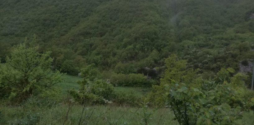 Si perdono nel bosco, i carabinieri di San Bartolomeo in Galdo salvano una coppia