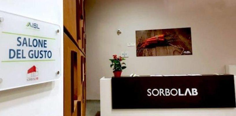 """Sorbo Lab, Buonopane: """"Fare sistema tra le aziende per valorizzare i nostri vini anche all'estero"""""""
