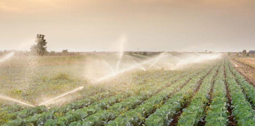 Agricoltura ed emergenza idrica, a Montoro si presenta il progetto per l'uso efficente dell'acqua