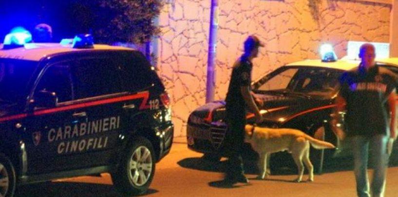 """Droga, il cane """"Attila"""" fa arrestare uno spacciatore 45enne di Mirabella Eclano"""