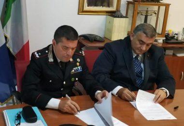 Controlli sulla cannabis: l'Istituto Zooprofilattico di Portici al fianco dei Carabinieri