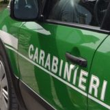 Serino, combustione di residui vegetali: denunciato dai carabinieri forestali