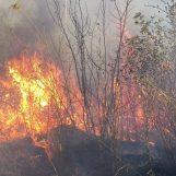 VIDEO-FOTO/ Col caldo tornano gli incendi in Irpinia: serie di roghi tra Paternopoli e San Mango