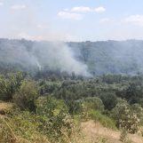 Quattro incendi in Irpinia: roghi a Pietrastornina, Torre le Nocelle, Lapio e Taurasi