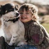 Microchip gratuiti ai propri cani, appuntamento venerdì a Grottolella