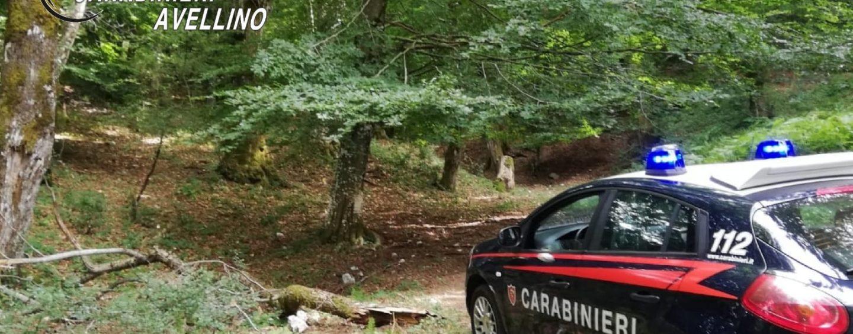 Vanno a funghi sul Terminio ma si perdono: rintracciati dai carabinieri