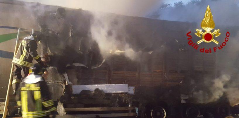 A16 in tilt: camion di pomodori diretto in Puglia prende fuoco