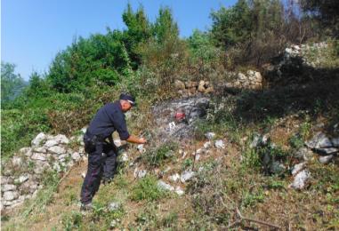 Incendio boschivo colposo: due denunce nel Sannio