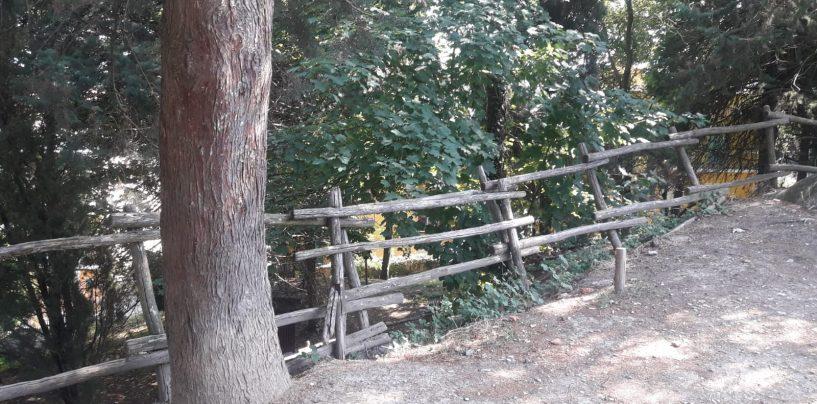 """Giornate ecologiche ad Ariano, l'assessore Grasso pensa al boschetto: """"Va riconsegnato ai cittadini"""""""