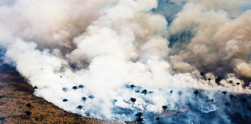 L'Amazzonia è in fiamme, catastrofe per il Pianeta: cosa sta succedendo?