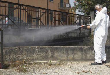 Ariano Irpino, interventi di derattizzazione sul territorio: le precauzioni consigliate dal Comune