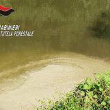 Ancora acque industriali riversate nel fiume Sabato, individuato il responsabile dell'azienda inquinante