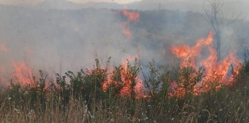 Ancora incendi in Irpinia: a Montemiletto in fiamme più di sei ettari