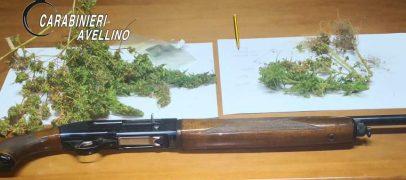 Marijuana e fucile in casa, 30enne di Summonte ed un suo familiare finiscono nei guai