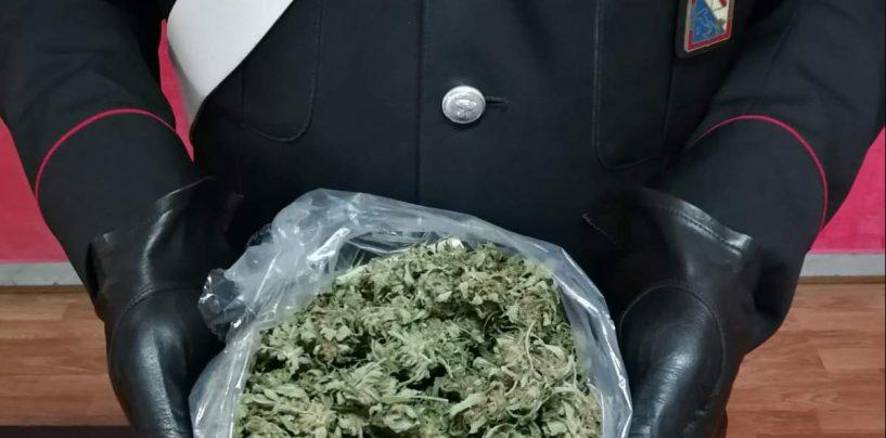 Avella: arrestato 30enne sorpreso con hashish e mezzo chilo di marijuana