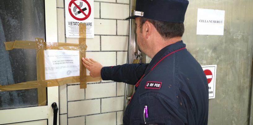 Benevento: liquidi della macellazione nel piazzale, carabinieri forestali sequestrano allevamento