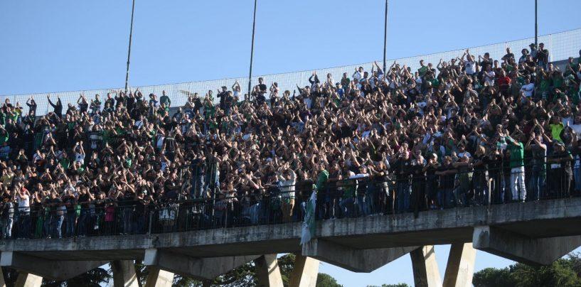 Caos Avellino, la Curva Sud annuncia lo sciopero del tifo