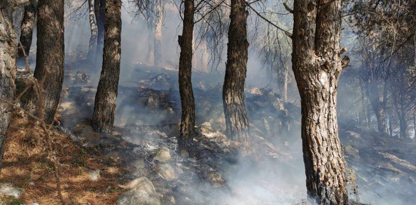Ancora incendi in Irpinia: fiamme ad Avella