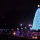A Caposele l'albero di Natale più alto e solidale d'Europa