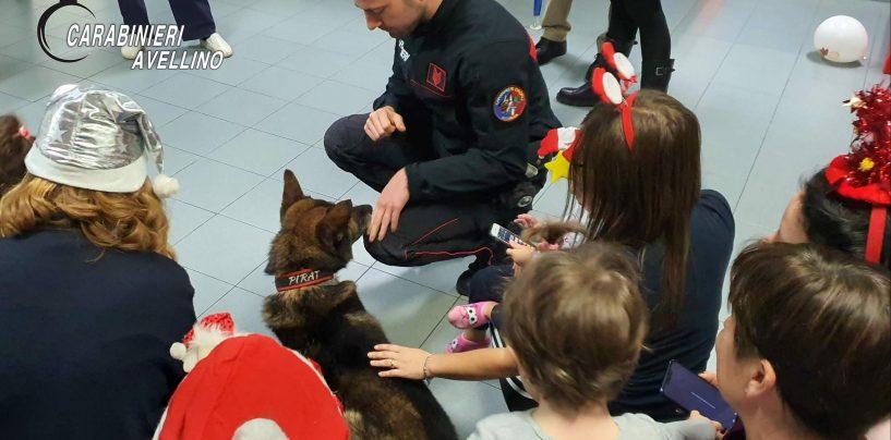 """FOTO/ Carabinieri, il cane """"Pirat"""" porta un sorriso anche ai bimbi del """"Frangipane"""""""